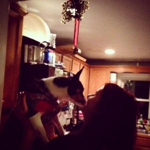 Sammie has CRPS and celebrates the holiday season with her puppy.