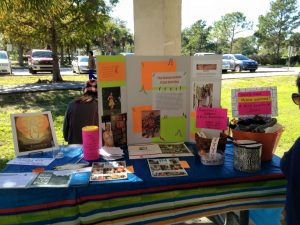 Information Table at the Crazy Sock Walk